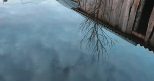 Reflection of a wooden shed and a dry little tree in the water.  stock footage