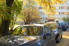 Reflection of yellow autumn trees in the windshields of the cars. royalty free stock photos