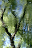 Reflections. Image of sky and trees reflected in moving river water stock photography
