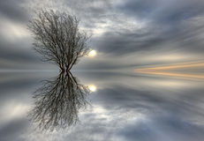 Reflections Royalty Free Stock Images