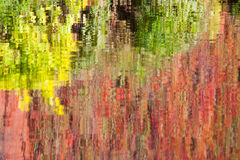Reflections. Of autumn trees in river water Stock Photography