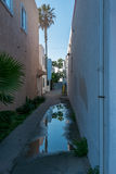 Reflections in alley water Royalty Free Stock Image