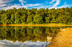 Reflections along the shore of Lake Marburg, Codorus State Park, Royalty Free Stock Images
