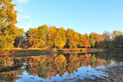 Reflections in autumn Royalty Free Stock Image