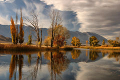 Reflections of Autumn Colors. Vibrant fall colors reflect off a duck pond in Bishop, California stock images