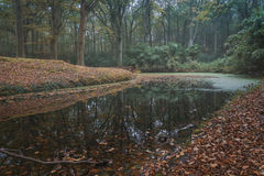 Reflections in autumn. Autumn in the old manor park, gives a surprisingly beautiful autumn scenery Royalty Free Stock Photography