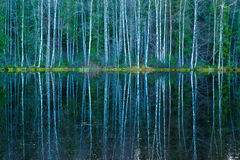 Reflections Royalty Free Stock Photos