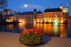 Reflections of the Binnenhof 13 century gothic castle on the Hofvijver lake at dusk during the blue hour. With colorful tulips in the foreground,The Hague royalty free stock photos
