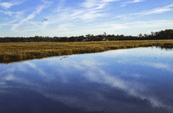 Reflections and clouds on marshland of coastal Geo Royalty Free Stock Photos