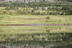 Reflections in countryside ocean Stock Photography