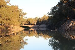 Reflections of the Darling River. Reflections on the Darling River in Kinchega National Park. Mendindee NSW Royalty Free Stock Images