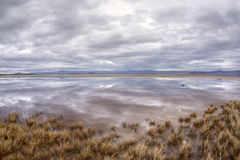 Reflections on desert oasis. Storm clouds cast reflections over calm surface of pool created from winter rains at Zzyzx in California Mojave Desert Royalty Free Stock Images