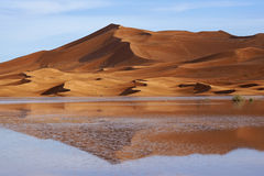 Reflections in the desert Royalty Free Stock Images