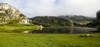 Reflections on Ercina Lake, Covadonga. Reflections on peaceful waters of Ercina Lake in spring at Covadonga, Picos de Europa national Park, Asturias, Spain Royalty Free Stock Image