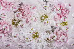 Reflections of flowers in water droplets Royalty Free Stock Images
