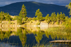 Reflections on Forested Mountain Lake Royalty Free Stock Image