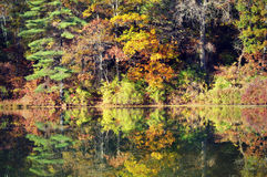 Reflections royalty free stock photography