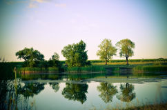 Reflections of green trees, blue sky and clouds in the calm water lake Royalty Free Stock Image
