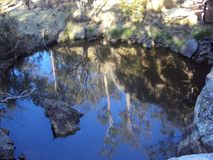 Reflections of gum trees in a waterhole in bushland royalty free stock image
