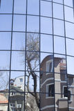 Reflections of houses and trees in a new glass building Royalty Free Stock Photography