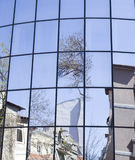 Reflections of houses and trees in a new glass building Royalty Free Stock Image