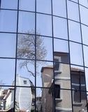 Reflections of houses and trees in a new glass building Stock Photography