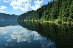 Reflections on a lake stock photos