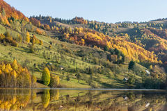 Reflections on a lake with autumnal forest Stock Images