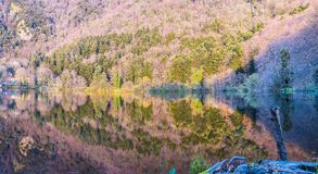 Reflections on the lake Royalty Free Stock Images