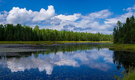 Reflections, lake gust, minnesota Royalty Free Stock Photos