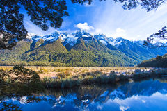 Reflections in Mirror Lakes. New Zealand stock photos