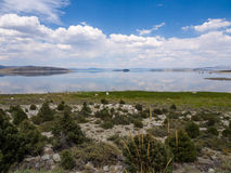 Reflections. Mono Lake. Reflections of clouds, California Stock Image