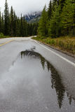 Reflections on Morain Lake Road royalty free stock images
