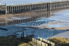 Dockside mudflats stock images