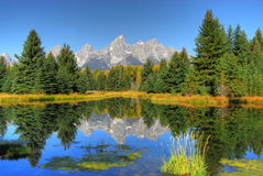 Reflections of Nature. Reflections of mountains and forest in abeaver pond Stock Photography