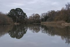 The Ornamental Pond, Southampton Common, on a cloudy morning Royalty Free Stock Image