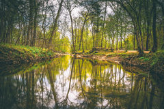 Reflections in the Patowmack Canal at Great Falls Park, Virginia Stock Images