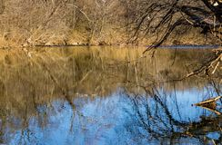 Reflections on Peaceful Trout Stream. Reflections on the a peaceful trout stream located in beautiful Roanoke County, Virginia, USA stock images