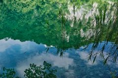 Reflections in Plitvice Lakes, Croatia. Reflections of sky, clouds, trees and rushes or reeds in calm water in Plitvice Lakes, Plitvice National Park, Croatia stock photo