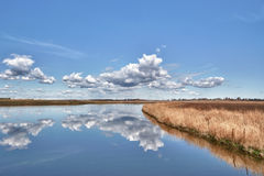Reflections in Ralph Klein Park Stock Images