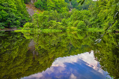 Reflections. Rift valley lake, dense greenery and a small wooden pier Royalty Free Stock Photo