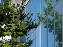 Reflections of Seattle Stock Photography