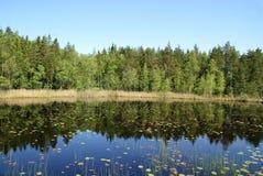 Reflections on Serene Lake Royalty Free Stock Photos