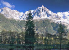 Reflections of snow-capped peaks. Chamonix - a famous ski resort in the French Alps. Reflections of snow-capped peaks and coastal trees in city park pond Royalty Free Stock Photography