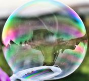 Reflections in a soapy bubble royalty free stock photography