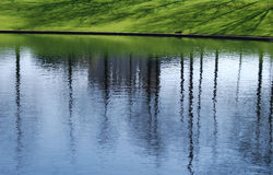 Reflections and spring grass. Bright green spring grass, shadows, and the blue sky reflecting on a local pond royalty free stock image