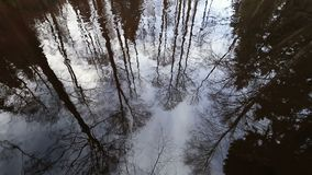 Reflections of trees branches on water surface of the river. Reflections of trees branches on the water surface of the river stock footage