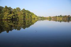 Reflections of trees in petersfield lake hampshire royalty free stock images