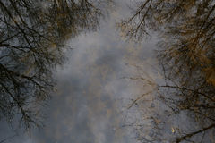 Reflections of trees in the river waters royalty free stock photos