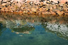 Reflections in the Water Stock Photography